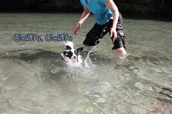 IMG_0755川遊び川遊び