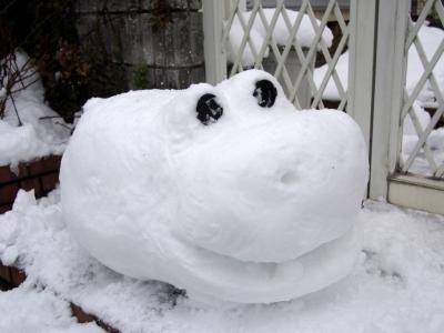 Snow_140214-042.jpg