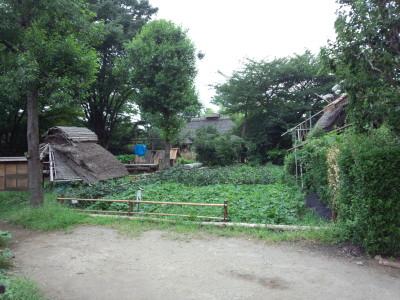 世田谷民家園