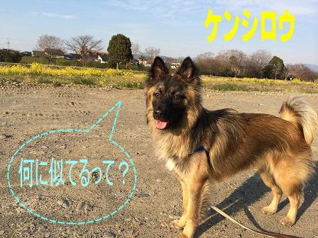 20140421-kenshirou.jpg