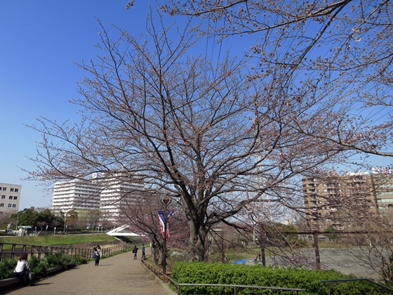 Pic of 14年3月-6