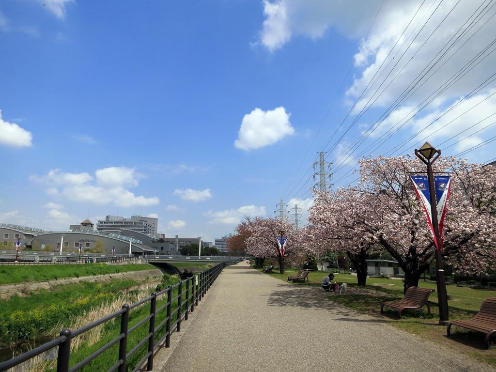 140414鶴見川-1