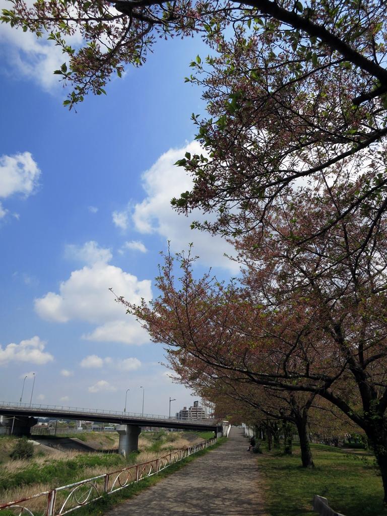 140414鶴見川-4