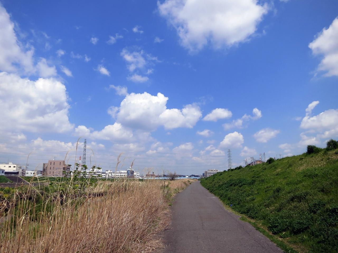 140414鶴見川-5