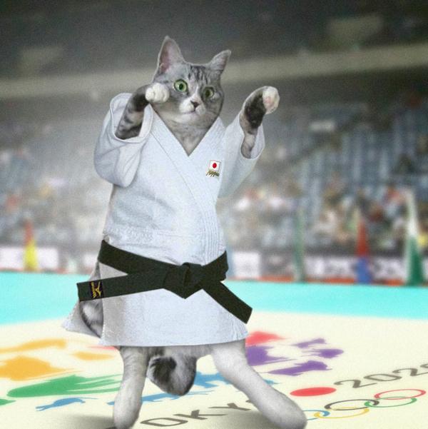 五輪猫みーちゃん