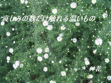 104_0482.jpg