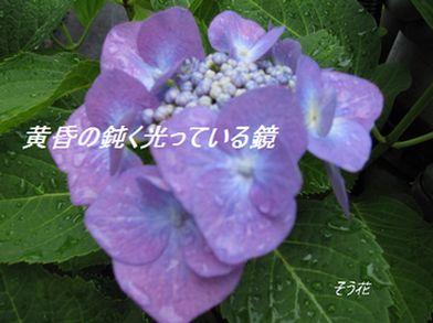 IMG_0060  鏡