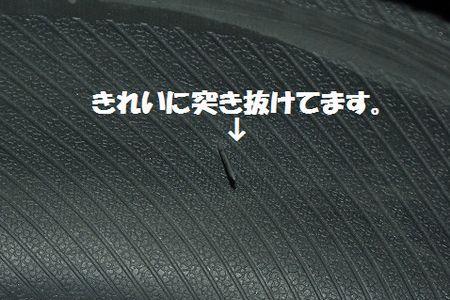 IMGP2918__01.jpg
