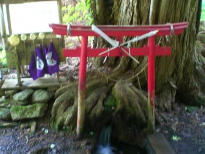 dougahara140628_1.jpg