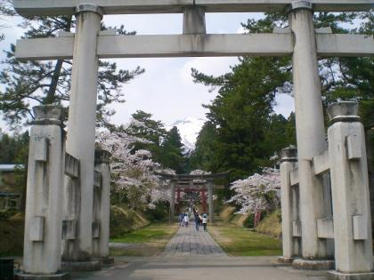 sakurabayasi14_13.jpg