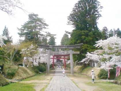 sakurabayasi14_14.jpg
