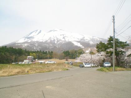 sakurabayasi14_2.jpg