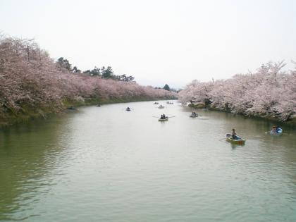 sakuramaturi140426_11.jpg