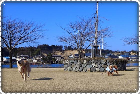 2014,2,24湖畔公園1