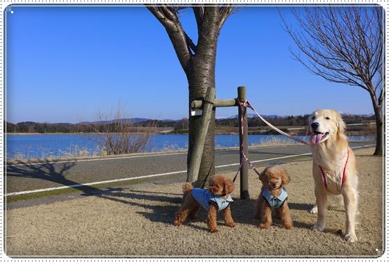 2014,2,24湖畔公園4
