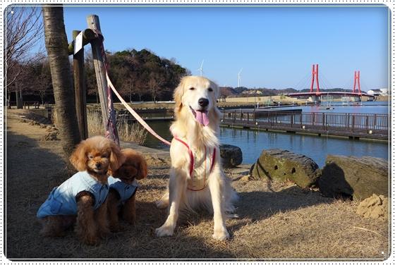 2014,2,24湖畔公園10