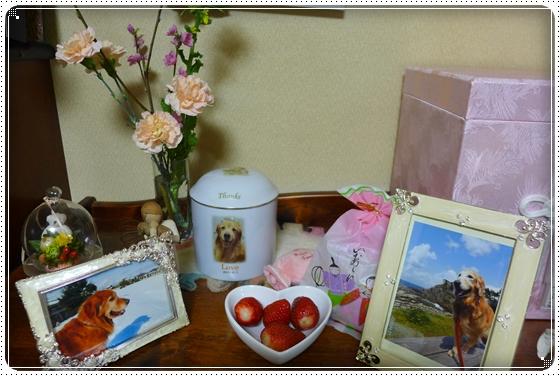 2013,3,3お雛祭り5