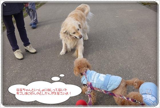 2014,3,7お散歩6