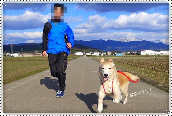 2014,3,22お散歩5