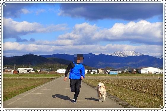 2014,3,22お散歩4