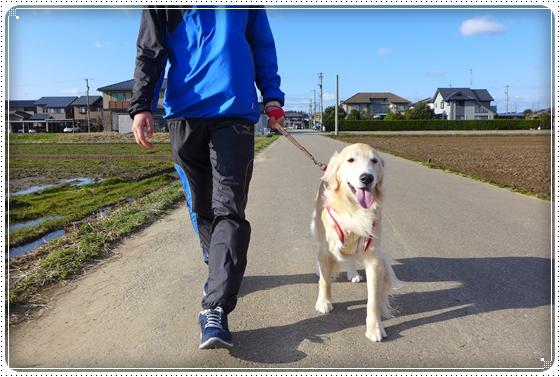 2014,3,22お散歩3
