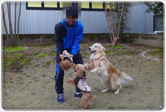 2014,3,22お散歩8