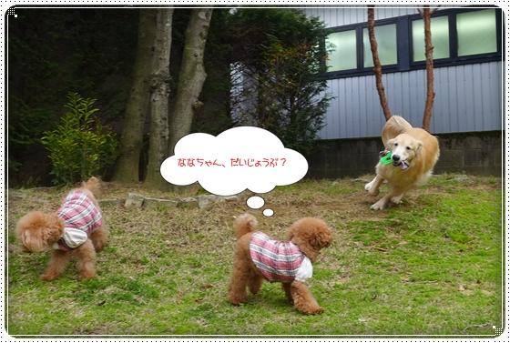 2014,4,13お庭遊び2