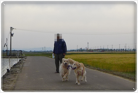 2014,5,20お散歩1