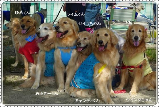 2014,5,25運動会7