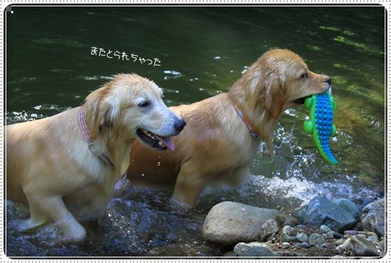 2014,6,2川13