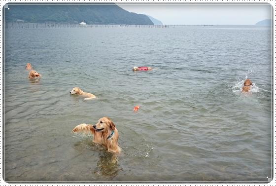 2014,6,7琵琶湖5