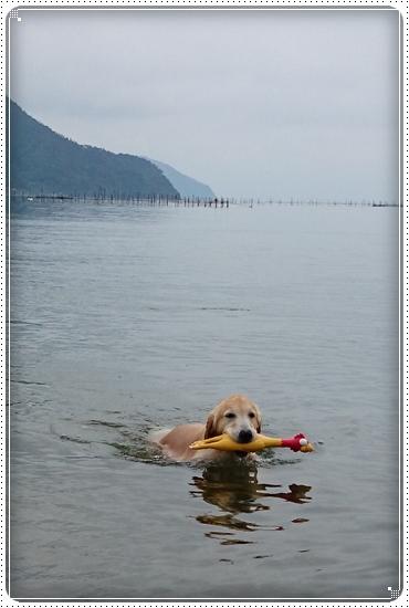 2014,6,7琵琶湖4