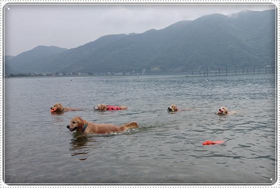 2014,6,7琵琶湖3