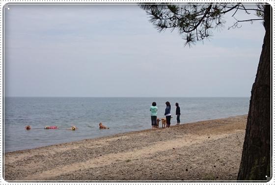 2014,6,7琵琶湖2