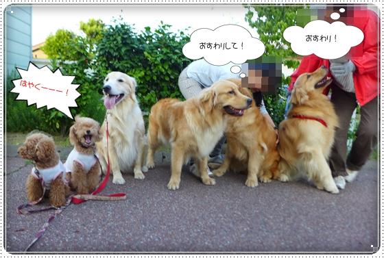 2014,6,25お散歩12