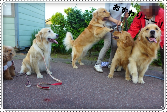 2014,6,25お散歩9