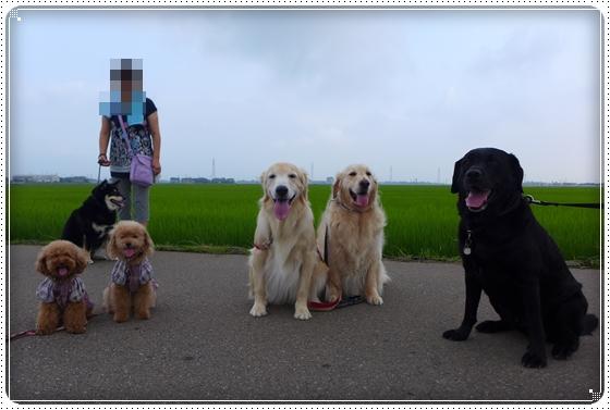 2014,7,11お散歩11