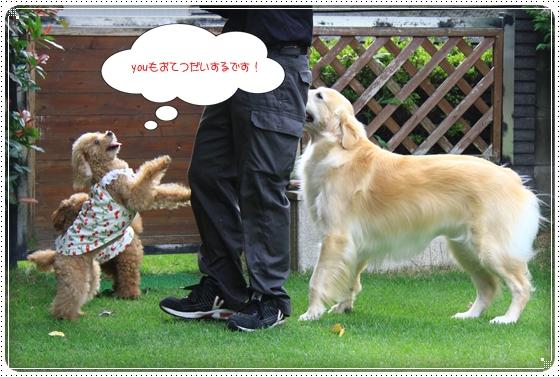2014,7,16お庭遊び7