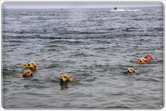 2014,7,22琵琶湖4