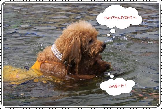 2014,7,24琵琶湖5