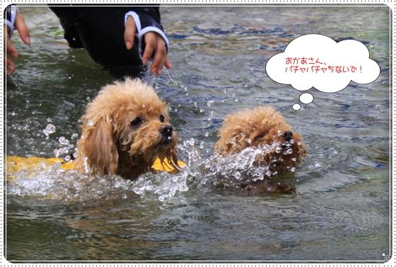2014,7,24琵琶湖4
