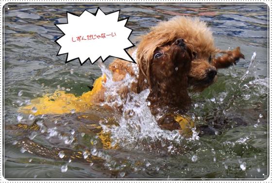 2014,7,24琵琶湖7