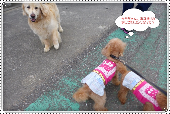 2014,8,2お散歩2