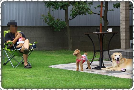 2014,8,3お庭遊び9