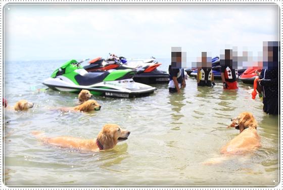 2014,8,15琵琶湖3