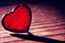 光と愛の感謝日記 死亡説が流れていた事件(それもまた愛)