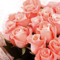 光と愛の感謝日記 エンジェルライトセラピーメールセッションのご感想