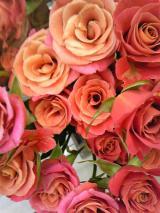 光と愛の感謝日記 与えてくれる相手と受け取ろうとする自分