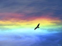 光と愛の感謝日記 エゴ(我欲)が地球を傷つけても