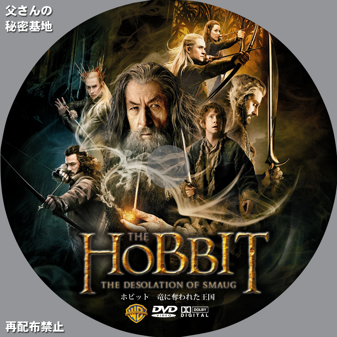 The Hobbit The Desolation of Smaug_DVD